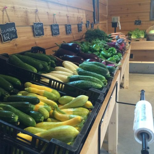 Farmstand Member Options